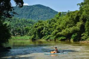 SUP сплав по реке Гин Ганга Шри Ланка