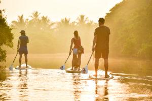 Sunset SUP cruise Sri Lanka