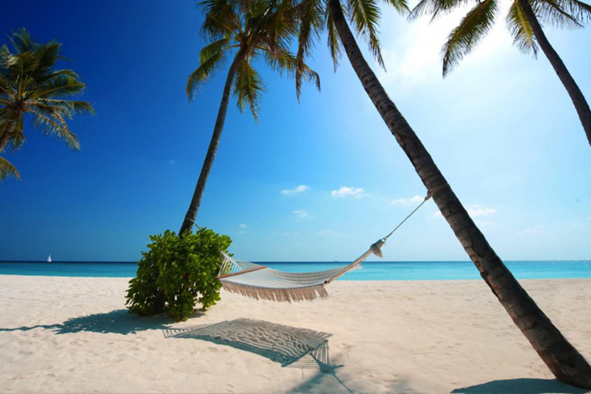 Райский отдых