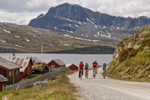 Последний день в Норвегии - велосипедная проглука по парку Jotunheimen