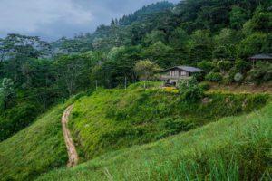 Йога ретрит центр в горах Шри Ланки