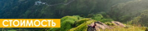 Стоимость йога тура на Шри Ланку